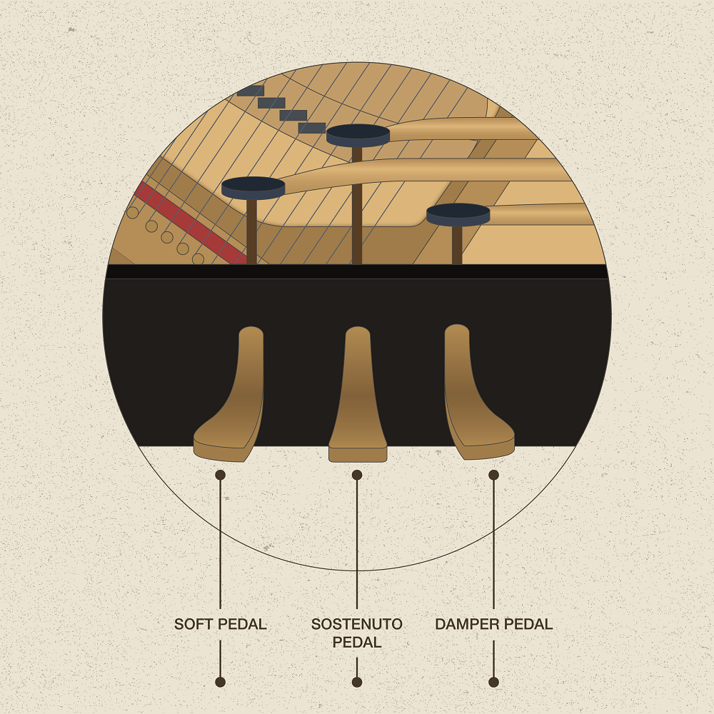 Piano Pedals in Detail