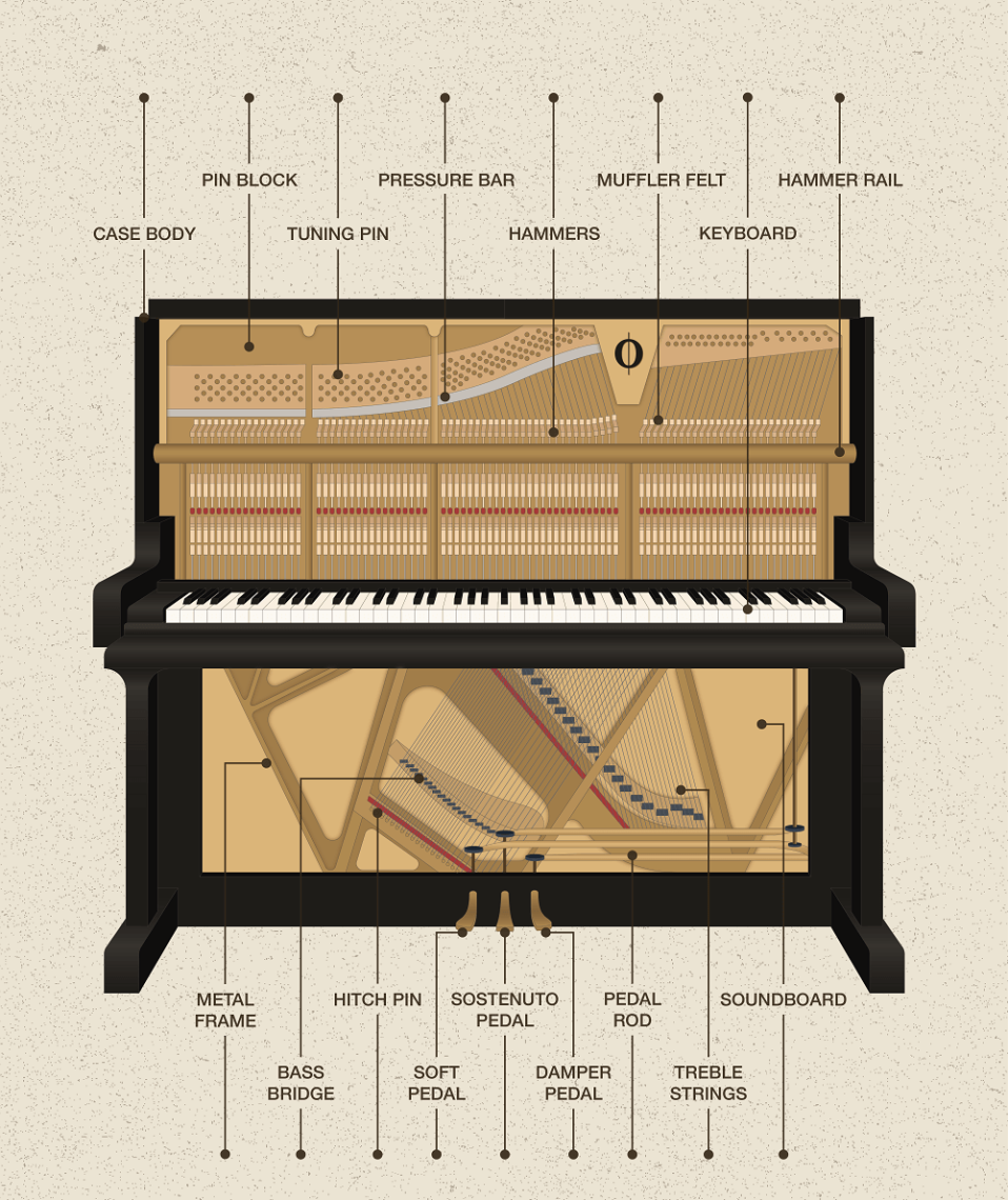piano anatomy acoustic piano